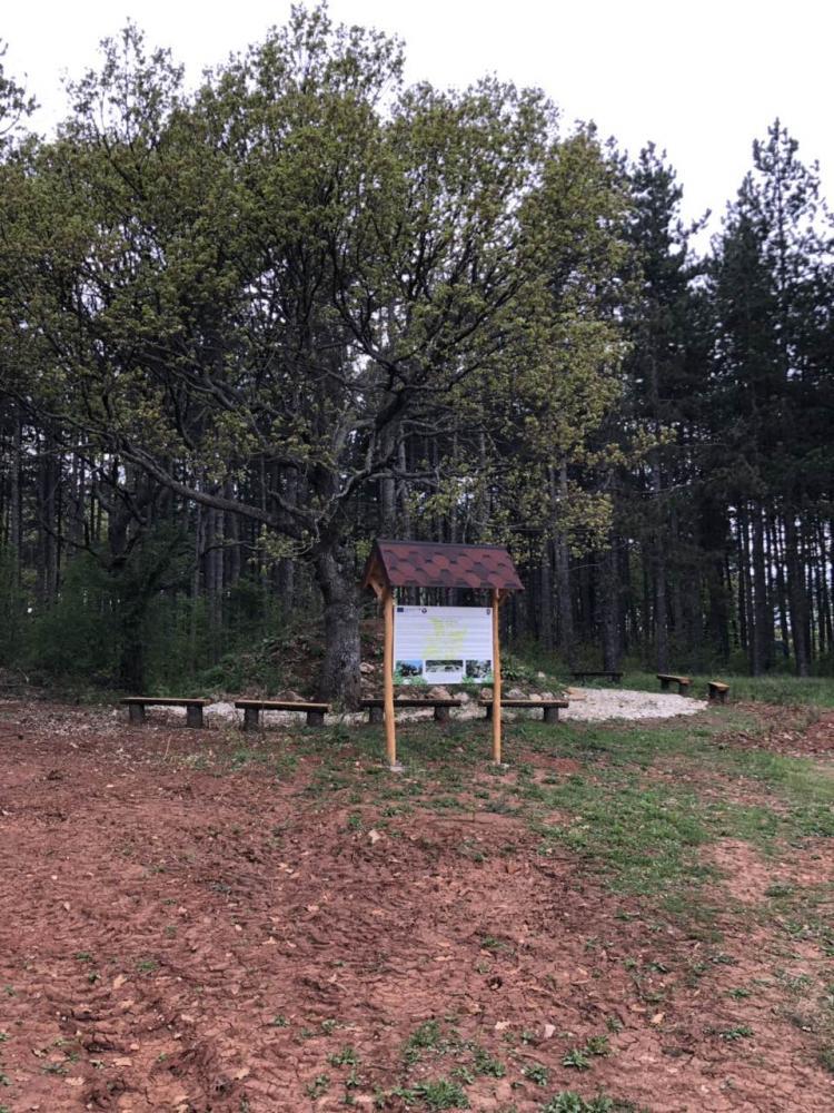 Plochest, Topolovgrad